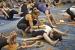 Mysore Yoga Confluence San Diego 19
